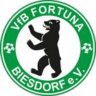 VfB Biesdorf